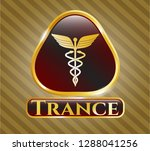 golden emblem with caduceus... | Shutterstock .eps vector #1288041256