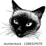 vector drawing of the head of a ... | Shutterstock .eps vector #1288329070