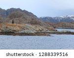 norwegian sunset from a ship... | Shutterstock . vector #1288339516