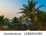 beautiful landscape with palm... | Shutterstock . vector #1288342489