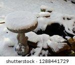 concrete birdbath with the top... | Shutterstock . vector #1288441729