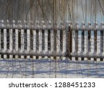 thin curtain of willow twigs... | Shutterstock . vector #1288451233