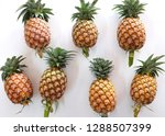 flat lay and top view many... | Shutterstock . vector #1288507399