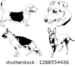 vector drawings sketches...   Shutterstock .eps vector #1288554436