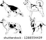 vector drawings sketches...   Shutterstock .eps vector #1288554439