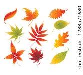 beauty autumn leaf vector | Shutterstock .eps vector #1288571680