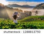 asian woman wearing vietnam... | Shutterstock . vector #1288813750