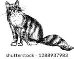 cat. hand drawn sketch. vector... | Shutterstock .eps vector #1288937983