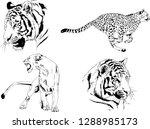 vector drawings sketches...   Shutterstock .eps vector #1288985173