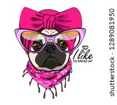 vector dog with pink turban ... | Shutterstock .eps vector #1289081950