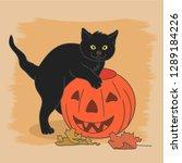 cat with pumpkin | Shutterstock .eps vector #1289184226
