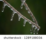 closeup of icicles hanging... | Shutterstock . vector #1289188036