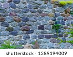 stone wall entwined with ivy. | Shutterstock . vector #1289194009