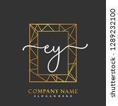 ey initial handwriting logo... | Shutterstock .eps vector #1289232100