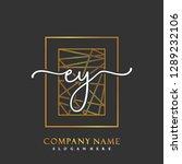 ey initial handwriting logo... | Shutterstock .eps vector #1289232106