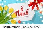 international women's day... | Shutterstock .eps vector #1289233099