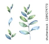 watercolor drawing of set with... | Shutterstock . vector #1289279773
