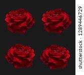 red roses on dark background... | Shutterstock . vector #1289446729