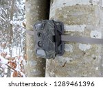 photo traps in forests  camera... | Shutterstock . vector #1289461396