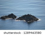 corners of the coast of  cabo... | Shutterstock . vector #1289463580