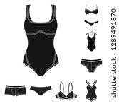 vector design of bikini and...   Shutterstock .eps vector #1289491870
