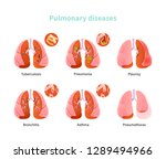 set lung diseases. tuberculosis ... | Shutterstock .eps vector #1289494966
