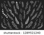hand drawn set of floral  plant ...   Shutterstock .eps vector #1289521240