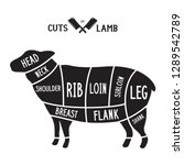 meat cuts   lamb. diagrams for... | Shutterstock .eps vector #1289542789