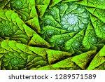 3d abstract fractal background. ...   Shutterstock . vector #1289571589