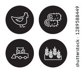 4 linear vector icon set   hen  ... | Shutterstock .eps vector #1289588449