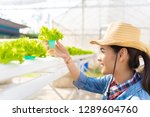 asian farmers holding ... | Shutterstock . vector #1289604760