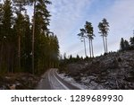 winding dirt road through a... | Shutterstock . vector #1289689930