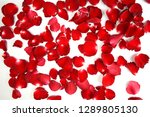 Stock photo background of beautiful red rose petals image 1289805130