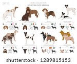 hunting dogs collection... | Shutterstock .eps vector #1289815153