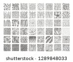 botanical vector textures for... | Shutterstock .eps vector #1289848033