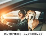 man riding a car and his beagle ... | Shutterstock . vector #1289858296