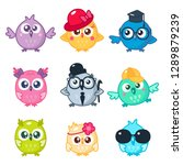 set of cute colorful owls with...