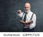senior academic professor... | Shutterstock . vector #1289917123