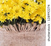 Yellow flowers decorated with canvas - stock photo