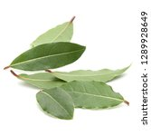 aromatic bay leaves isolated on ... | Shutterstock . vector #1289928649