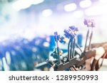 bunch of wiring harnesses.... | Shutterstock . vector #1289950993