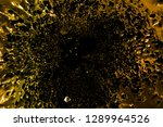 abstract golden metallic liquid ... | Shutterstock . vector #1289964526