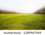 beautiful green spring rural... | Shutterstock . vector #1289967049