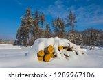 beautiful winter snowbound... | Shutterstock . vector #1289967106