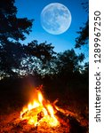 touristic camp fire in a forest ... | Shutterstock . vector #1289967250