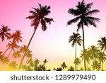 palms and sun  tropical sunset...   Shutterstock . vector #1289979490