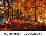 fall foliage at feeder dam... | Shutterstock . vector #1290028069