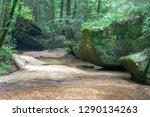Moss Covered Rocks On Creekbank