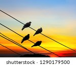 Silhouette Of Birds On Wire At...
