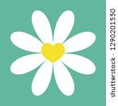 white daisy chamomile icon....   Shutterstock .eps vector #1290201550